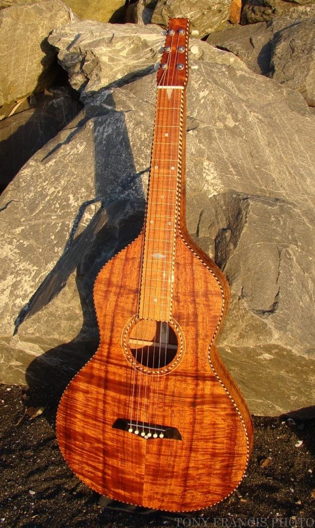 Tony Francis Style 4 guitar